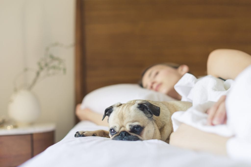 sleep is a great natural migraine remedy