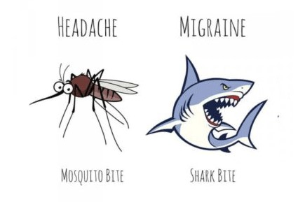 Headache or migraine graphic comparing it to a mosquito vs shark bite